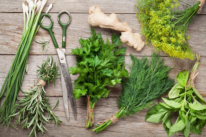Fresh Garden Herbs.